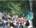 Local Festivals