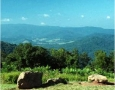 12,000 acres at Shenandoah National Park and Skyline Drive